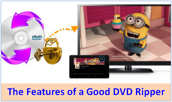 The Features of a Good DVD Decrypter