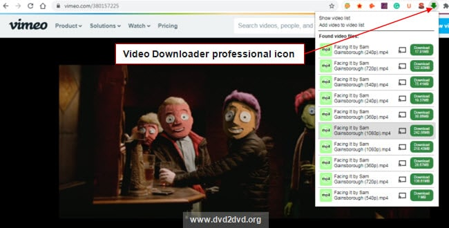 download vimeo video with video download professional