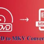 dvd to mkv converter